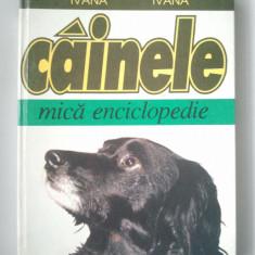 CAINELE - MICA ENCICLOPEDIE - FILEA IVANA * SIMONA IVANA ( Ct9 )