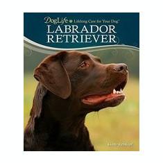 Labrador Retriever [With DVD] - Carte in engleza