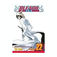 Bleach, Volume 22 - Carte in engleza