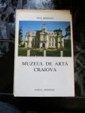 Muzeul de arta Craiova - Paul Rezeanu