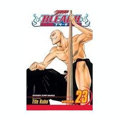 Bleach, Volume 23 - Carte in engleza