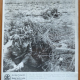 Grenadier german lansand grenada, Frontul de est, foto originala din razboi - Fotografie veche