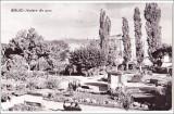 Barlad.Vedere din parc,circulata,francata,1962