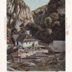 BRASOV, PIETRELE LUI SOLOMON, CIRCULATA AUG.*901 - Carte Postala Transilvania pana la 1904, Printata