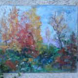 Peisaj de toamna, pictura in ulei - Pictor roman, Flori, Altul