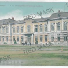 1929 - Bucovina, Suceava, RADAUTI - old postcard - unused - Carte Postala Bucovina 1904-1918, Necirculata, Printata