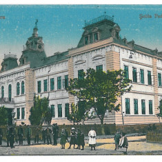 2017 - Dobrogea, SILISTRA, High School - old postcard - unused - Carte Postala Dobrogea 1904-1918, Necirculata, Printata