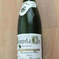 Vin alb de colectie foarte vechi nemtesc anul 1979 Riesling