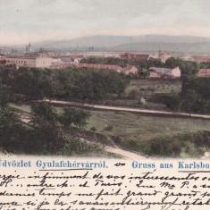 ALBA IULIA, SALUTARI DIN ALBA IULIA, CLASICA CIRC.1903 - Carte Postala Transilvania pana la 1904, Circulata, Printata