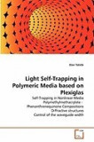 Light Self-Trapping in Polymeric Media Based on Plexiglas