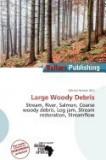 Large Woody Debris