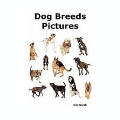 Dog Breeds Pictures: Over 100 Breeds Including Chihuahua, Pug, Bulldog, German Shepherd, Maltese, Beagle, Rottweiler, Dachshund, Golden Ret - Carte in engleza