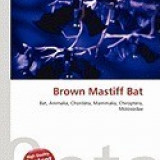 Brown Mastiff Bat
