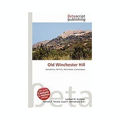 Old Winchester Hill - Carte in engleza