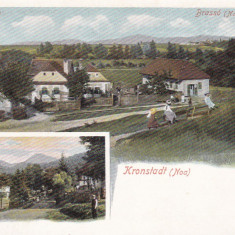 BRASOV ( NOA ), KRONSTADT - Carte Postala Transilvania pana la 1904, Necirculata, Printata