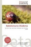 Babelomurex Diadema