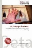 Acmaeops Proteus