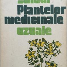 GHIDUL PLANTELOR MEDICINALE UZUALE - F. Craciun, M. Alexan