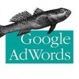 Google Adwords: Managing Your Advertising Program - Carte in engleza