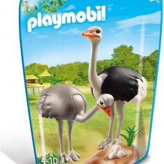 Strut Cu Pui Playmobil