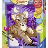 Pictura Pe Numere Tigru Si Cer Instelat