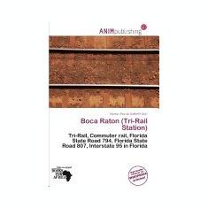 Boca Raton (Tri-Rail Station) - Carte in engleza