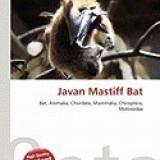 Javan Mastiff Bat