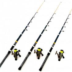 Set 3 Lansete 3 m Telescopice Black Panther Cu Mulinete Diamant LC 340 - Set pescuit
