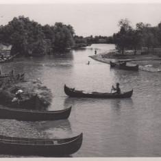 VALCOV, CANALUL PESCARILOR, STUDIO W.WEISS, BUCURESTI - Carte Postala Muntenia dupa 1918, Necirculata, Fotografie