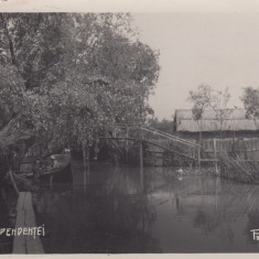 VALCOV, STRADA INDEPENDENTEI, FOTO BENERAF, CHILIA NOUA - Carte Postala Dobrogea dupa 1918, Necirculata, Fotografie