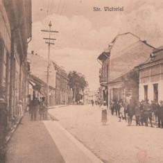 TARGU - JIU, STRADA VICTORIEI - Carte Postala Oltenia dupa 1918, Necirculata, Printata