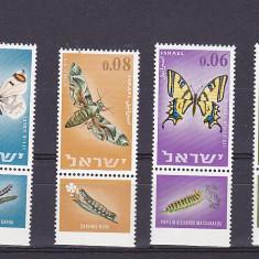 Fauna fluturi cu TAPS, Israel. - Timbre straine, Nestampilat