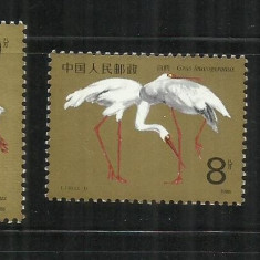 F 183 - COCORI - CHINA - SERIE NESTAMPILATA - Timbre straine