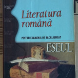 ESEUL LITERATURA ROMANA ,PENTRU EXAMENUL DE BACALAUREAT .