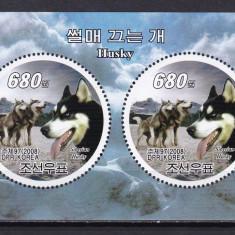 Coreea  2008  fauna  caini   husky   MI  bl.705      MNH  w29, Nestampilat