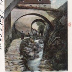 BRASOV, CIRCULATA MAR.''902 - Carte Postala Transilvania pana la 1904, Printata