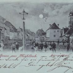 SEBES, SALUTARI DIN SEBESUL SASESC, PIATA MARE, CIRCULATA NOV.*900 - Carte Postala Transilvania pana la 1904, Printata