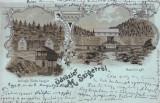 SIGHETU  MARMATIEI ,  SALUTARI DIN SIGHETUL MARMATIEI  LITOGRAFIE  CIRC. 1903, Circulata, Printata, Sighetu Marmatiei