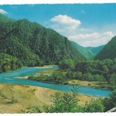 7405 - Romania ( 63 ) - Valcea, OLT valley - postcard - unused - 1967 - Carte Postala Oltenia dupa 1918, Necirculata, Printata