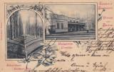 BUZIAS , SALUTARI  DIN  BUZIAS ,  CLASICA , CIRCULATA  1899, Printata