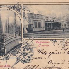 BUZIAS, SALUTARI DIN BUZIAS, CLASICA, CIRCULATA 1899 - Carte Postala Banat pana la 1904, Printata
