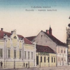 ARAD, LIPOVA, CATEDRALA ROMANA - Carte Postala Banat dupa 1918, Necirculata, Printata