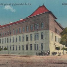CARANSEBES, SCOALA NORMALA, PRIMARA SI GIMNAZIUL DE FETE - Carte Postala Banat dupa 1918, Necirculata, Printata