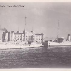 CONSTANTA, GARA MARITIMA - Carte Postala Dobrogea dupa 1918, Necirculata, Fotografie