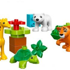 LEGO Duplo Puii De Animale - 10801