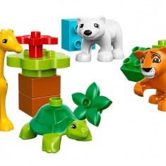 Pui De Animale Lego Duplo