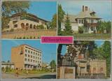 Campina.Vedere multipla,1981