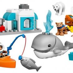 Arctic Lego Duplo