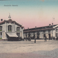 BRAILA, PESCARIILE STATULUI, EDITURA LIBRARIEI CARMEN SYLVA, BRAILA - Carte Postala Muntenia dupa 1918, Necirculata, Printata