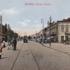 BRAILA STRADA REGALA TRAMVAI TRASURI TCV CIRCULATA - Carte Postala Muntenia 1904-1918, Printata